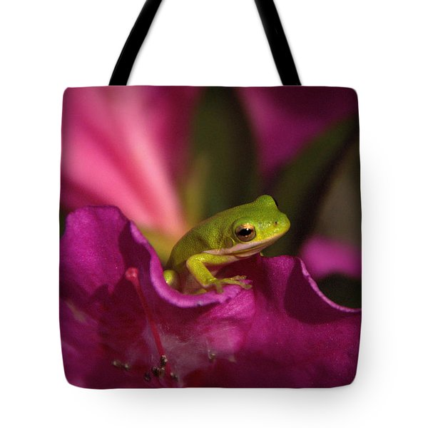 The Azalea Bed Tote Bag by Charlotte Schafer