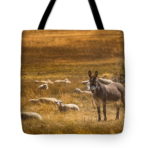 The Babysitter Tote Bag by Janis Knight