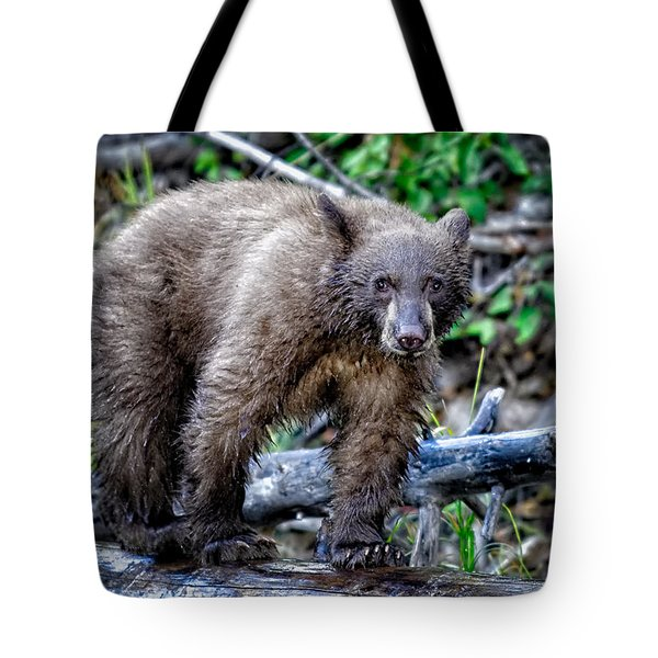 Tote Bag featuring the photograph The Balance Beam by Jim Thompson