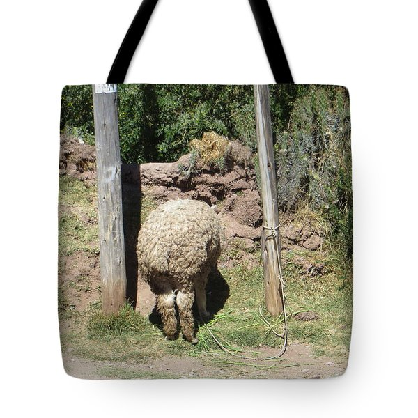 The Bashful Llama Tote Bag