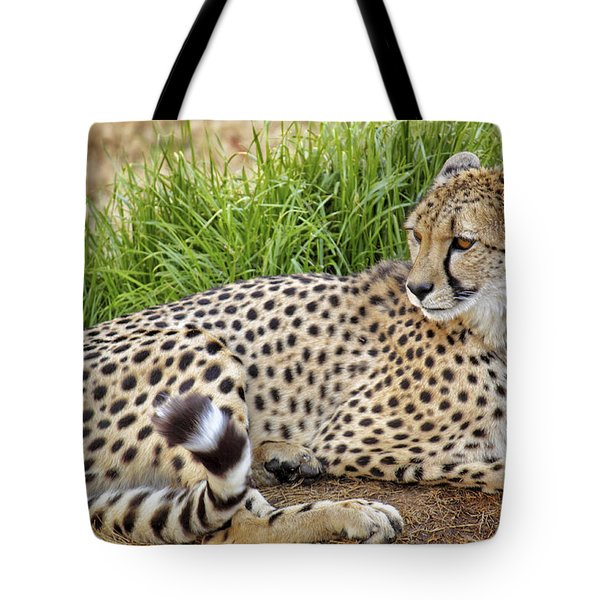 The Beautiful Cheetah Tote Bag by Jason Politte