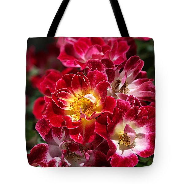 The Beauty Of Carpet Roses  Tote Bag