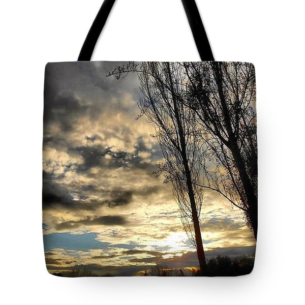After The Rain... Tote Bag