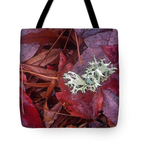 The Beauty Of Rain Tote Bag by Gwyn Newcombe
