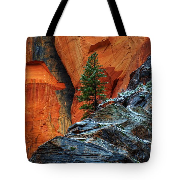The Beauty Of Sandstone Zion Tote Bag by Bob Christopher