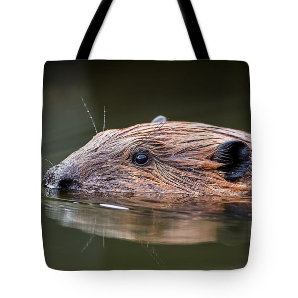 The Beaver Square Tote Bag