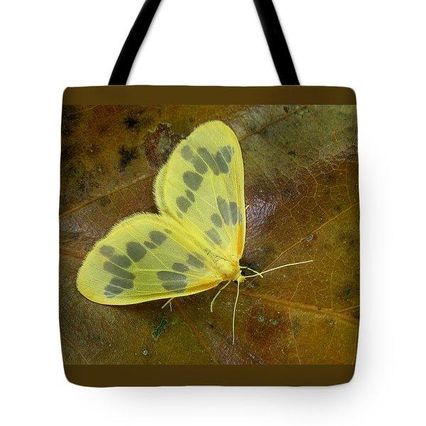 The Beggar Moth Tote Bag