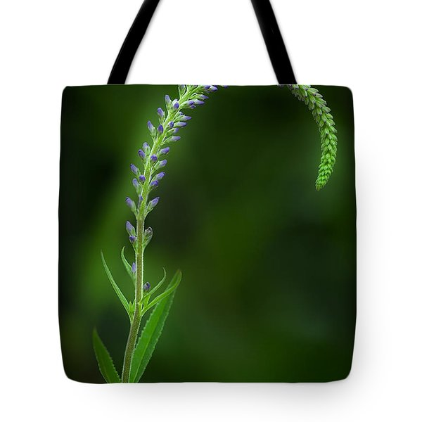 The Begining Tote Bag by Bill Wakeley
