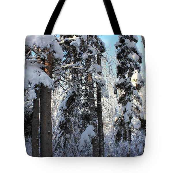 The Bench In Winter Tote Bag by Jim Sauchyn