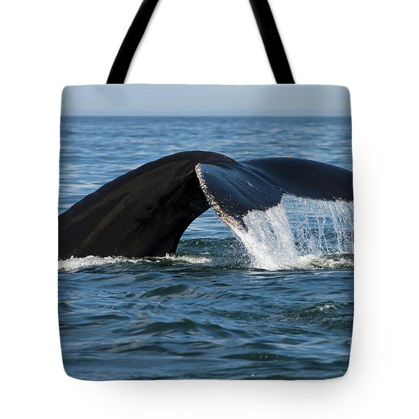 The Big Blue In The Bigger Blues... Tote Bag