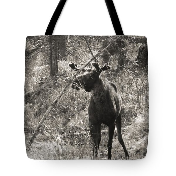 Tote Bag featuring the photograph The Big Dripper by Gigi Dequanne