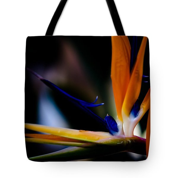 The Bird Of Paradise Tote Bag by David Patterson