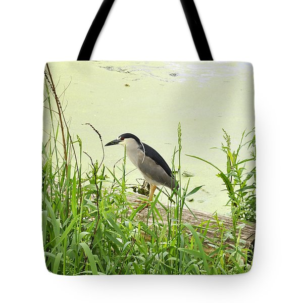 The Black-crowned Night Heron Tote Bag