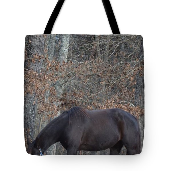 Tote Bag featuring the photograph The Black by Maria Urso