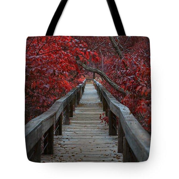The Boardwalk Tote Bag by Douglas Barnard