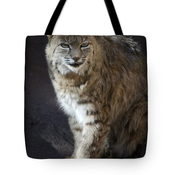 The Bobcat Tote Bag by Saija  Lehtonen