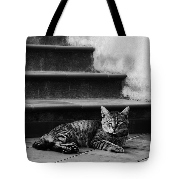 Tote Bag featuring the photograph The Boss by Laura Melis