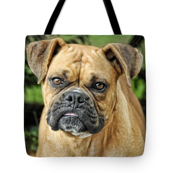 The Boxer Tote Bag by Kenny Francis