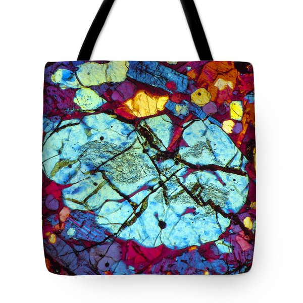 The Brain Tote Bag by Tom Phillips