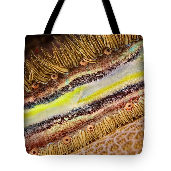 The Brightly Colored Mantle And Rows Tote Bag