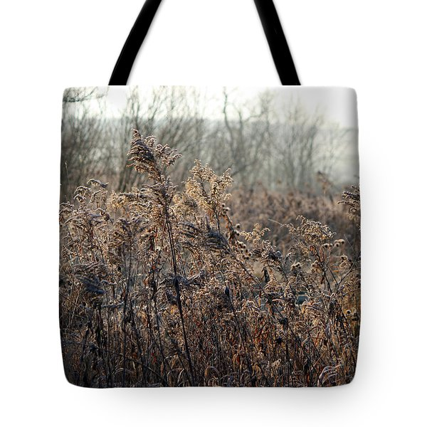 The Brown Side Of Winter Tote Bag