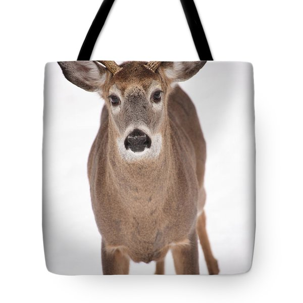 The Buck Stops Here Tote Bag by Karol Livote