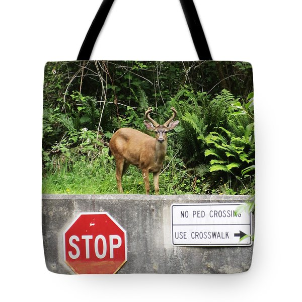 The Buck Stops Here Tote Bag by Kym Backland