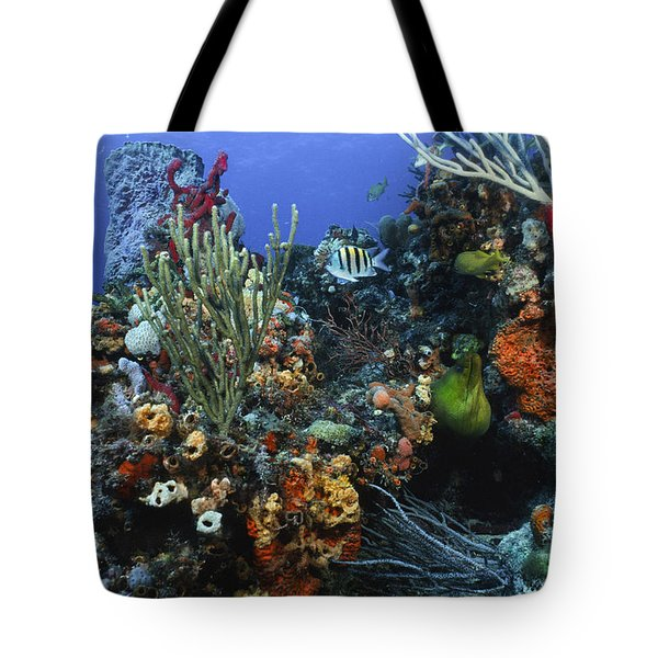 The Busy Reef Tote Bag