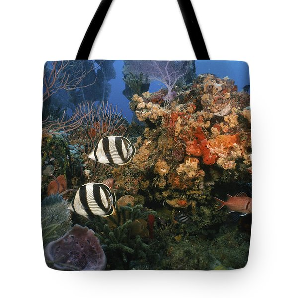 The Butterflyfish On Reef Tote Bag