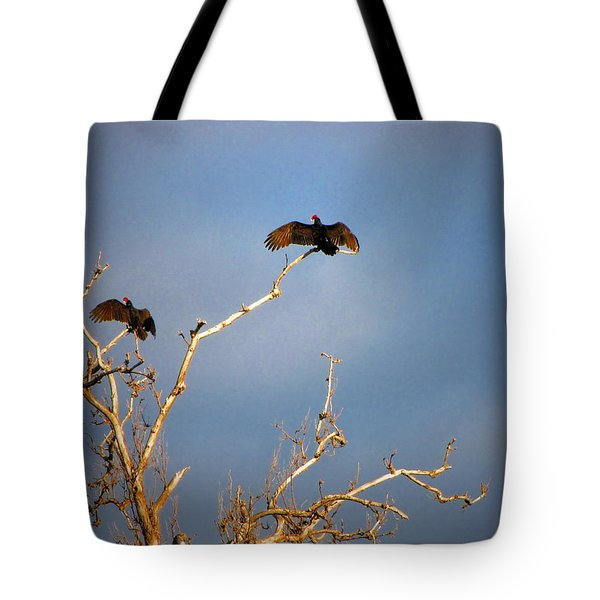 The Buzzard Roost Tote Bag by Joyce Dickens