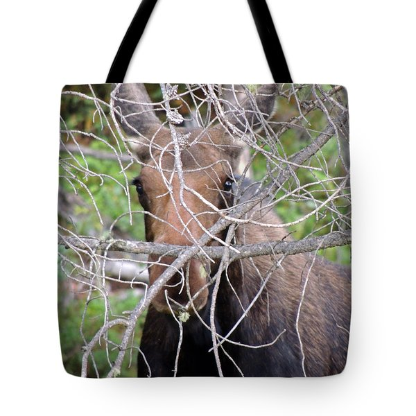 Tote Bag featuring the photograph The Calf by Lynn Sprowl