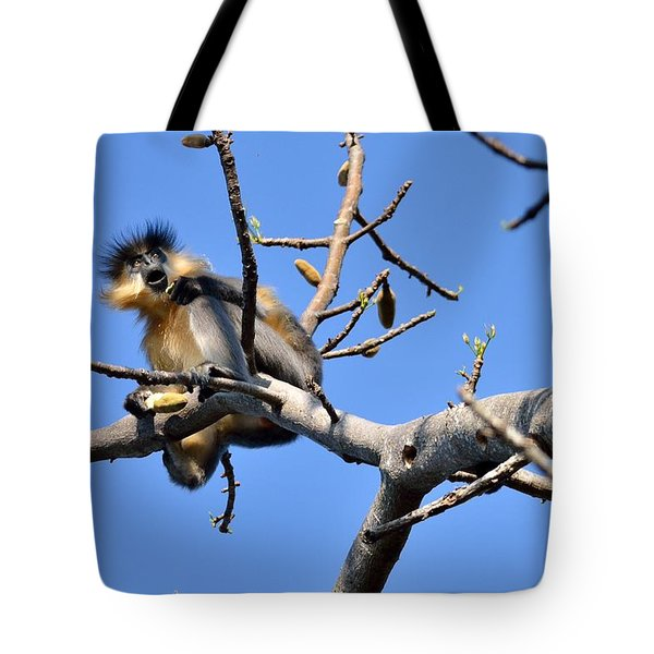 The Capped One Tote Bag