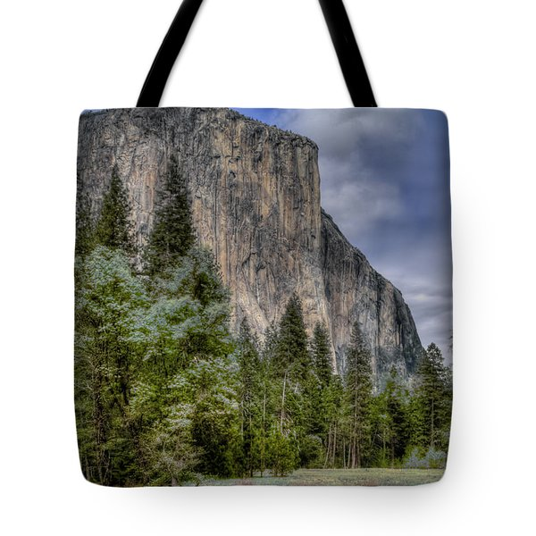 The Captain Tote Bag by Bill Gallagher