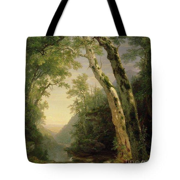 The Catskills Tote Bag