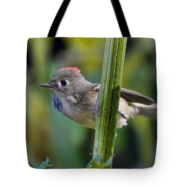 Tote Bag featuring the photograph The Challenge by Gary Holmes