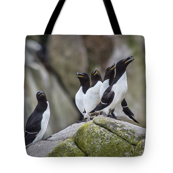 The Chorus Line Tote Bag by Evelina Kremsdorf