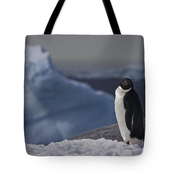 The Coldest Place On Earth... Tote Bag