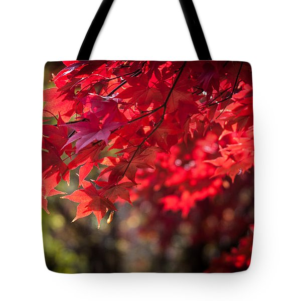 Tote Bag featuring the photograph The Color Of Fall by Patrice Zinck