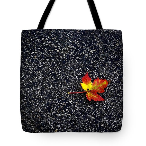 The Colors Of Autumn Tote Bag