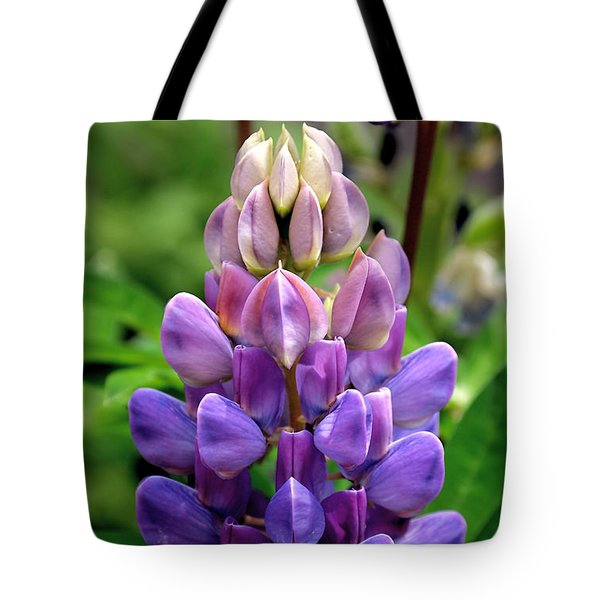 The Colors Of Lupine Tote Bag