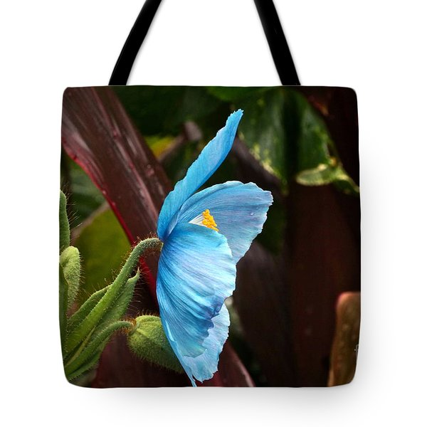 The Colors Of The Himalayan Blue Poppy Tote Bag