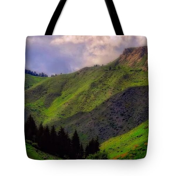 The Colors Of Wyoming In Summer Tote Bag