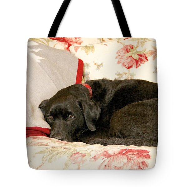 I Don't Want To Get Off This Sofa Tote Bag by Colleen Williams