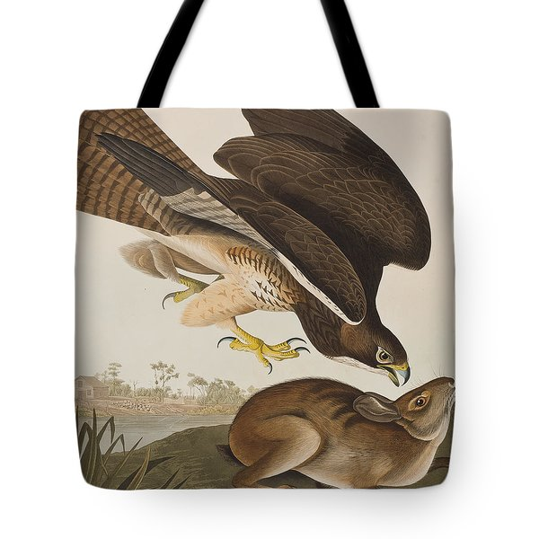 The Common Buzzard Tote Bag by John James Audubon