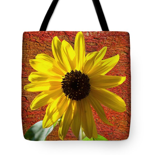 The Contrast Of Time Tote Bag