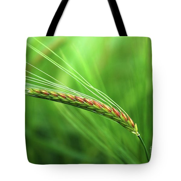The Corn Tote Bag