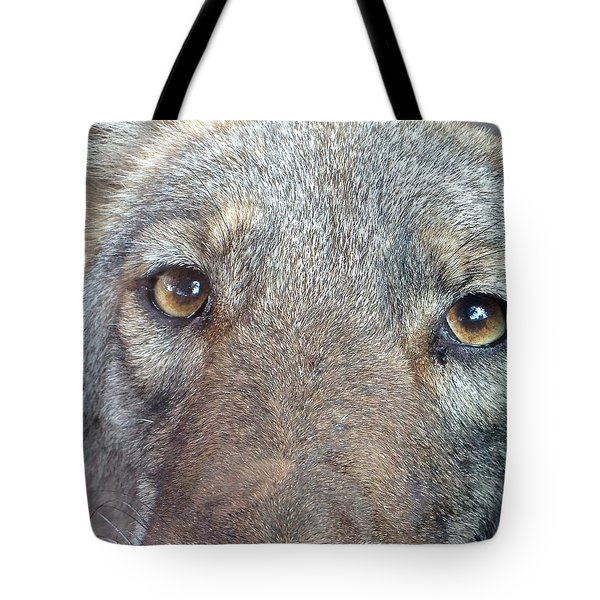 The Coyote Tote Bag by K Simmons Luna