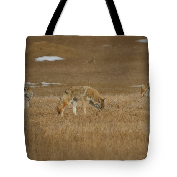 The Coyotes Painterly Tote Bag by Ernie Echols