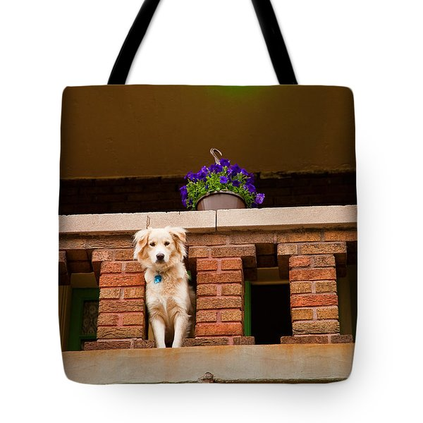 The Critic Tote Bag
