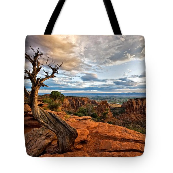 Tote Bag featuring the photograph The Crooked Old Tree by Ronda Kimbrow
